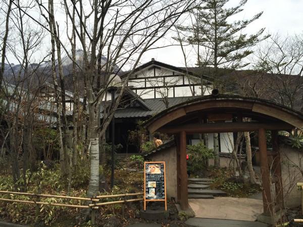 草庵秋桜1May 16 2015